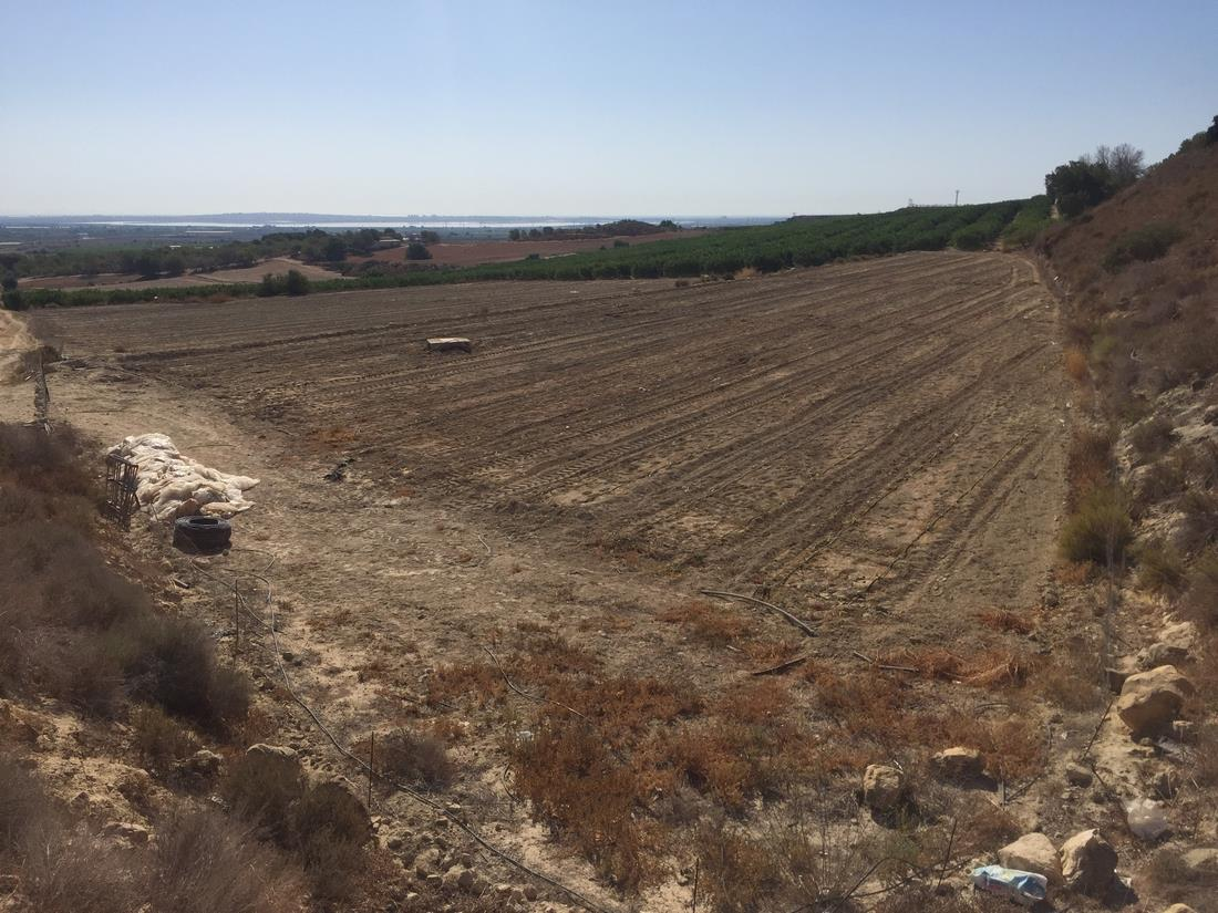 0 bedroom, 0 bathroom plot in San Miguel de Salinas only 60,000 euros